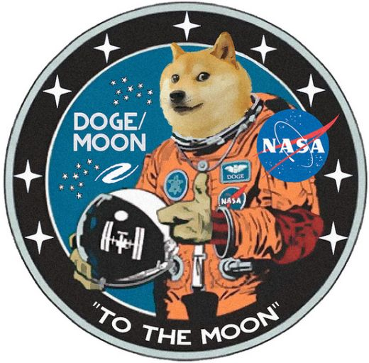 Will Dogecoin Succeed Dogecoin to the Moon